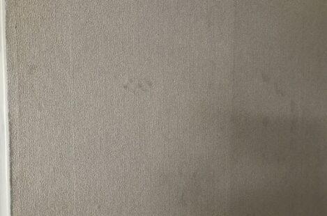 外壁塗装 春日井市 家の塗り替え おすすめクロス塗装